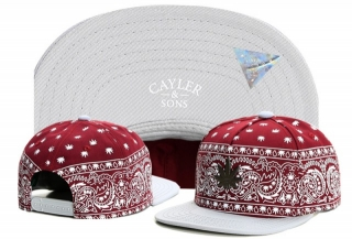 Wholesale Cayler & Sons Snapbacks Hats - TY (12)